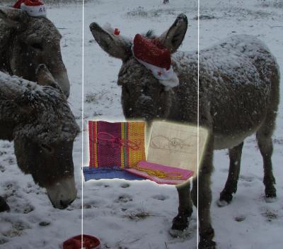 Pochettes cadeau Lédanès à l'unité
